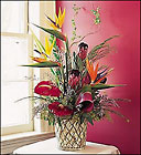 Tropical Delight Premier Flowers from Cottage Florist, Lakeland Fl 33813