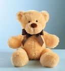 Plush Brown Bear Cottage Florist Lakeland Fl 33813 Premium Flowers lakeland