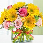 FRESH DELIGHT Cottage Florist Lakeland Fl 33813 Premium Flowers lakeland