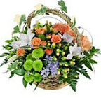 Mixed Spring Delight Premier Flowers from Cottage Florist, Lakeland Fl 33813