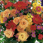 Custom Design Get Well Vase Arrangement Cottage Florist Lakeland Fl 33813 Premium Flowers lakeland