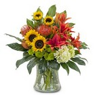 Sunset Waves Cottage Florist Lakeland Fl 33813 Premium Flowers lakeland
