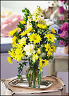 Sweet Celebrations Cottage Florist Lakeland Fl 33813 Premium Flowers lakeland