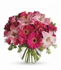 A Little Pink Me Up Cottage Florist Lakeland Fl 33813 Premium Flowers lakeland