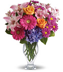 Wondrous Wishes by Teleflora Cottage Florist Lakeland Fl 33813 Premium Flowers lakeland