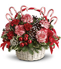 Candy Cane Christmas Cottage Florist Lakeland Fl 33813 Premium Flowers lakeland