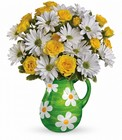 Teleflora's Happy Daisies Bouquet Premier Flowers from Cottage Florist, Lakeland Fl 33813