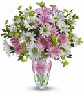 Sweet Blossoms Bouquet Premier Flowers from Cottage Florist, Lakeland Fl 33813