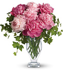 Perfect Peonies Cottage Florist Lakeland Fl 33813 Premium Flowers lakeland
