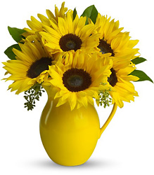Sunny Day Pitcher of Sunflowers Cottage Florist Lakeland Fl 33813 Premium Flowers lakeland