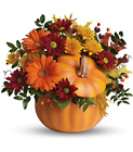 Country Pumpkin Cottage Florist Lakeland Fl 33813 Premium Flowers lakeland