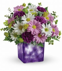 Dancing Violets Bouquet Cottage Florist Lakeland Fl 33813 Premium Flowers lakeland