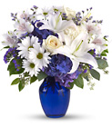 Beautiful in Blue Cottage Florist Lakeland Fl 33813 Premium Flowers lakeland