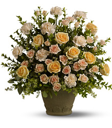 Rose Remembrance Cottage Florist Lakeland Fl 33813 Premium Flowers lakeland