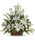Peaceful White Lilies Basket Cottage Florist Lakeland Fl 33813 Premium Flowers lakeland