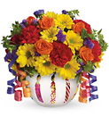 Teleflora's Brilliant Birthday Blooms Premier Flowers from Cottage Florist, Lakeland Fl 33813
