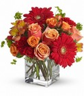 Santa Fe Sunset Bouquet by Teleflora Premier Flowers from Cottage Florist, Lakeland Fl 33813