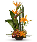 Exotic Grace Cottage Florist Lakeland Fl 33813 Premium Flowers lakeland