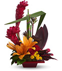Teleflora's Tropical Bliss Cottage Florist Lakeland Fl 33813 Premium Flowers lakeland