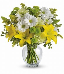 Brightly Blooming Cottage Florist Lakeland Fl 33813 Premium Flowers lakeland
