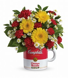 Campbell's Healthy Wishes  Cottage Florist Lakeland Fl 33813 Premium Flowers lakeland