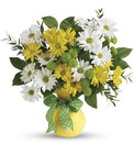 Daisies And Dots Bouquet Cottage Florist Lakeland Fl 33813 Premium Flowers lakeland