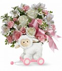 Sweet Little Lamb - Baby Pink Cottage Florist Lakeland Fl 33813 Premium Flowers lakeland