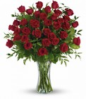Breathtaking Beauty Long Stemmed Cottage Florist Lakeland Fl 33813 Premium Flowers lakeland