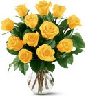 12 Yellow Roses Cottage Florist Lakeland Fl 33813 Premium Flowers lakeland