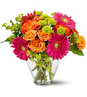 End of the Rainbow Cottage Florist Lakeland Fl 33813 Premium Flowers lakeland