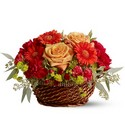Warm Your Heart Premier Flowers from Cottage Florist, Lakeland Fl 33813