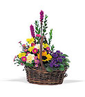 Basket of Glory Cottage Florist Lakeland Fl 33813 Premium Flowers lakeland