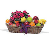 Plant and Fruit Basket Cottage Florist Lakeland Fl 33813 Premium Flowers lakeland