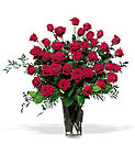 Three Dozen Red Roses Cottage Florist Lakeland Fl 33813 Premium Flowers lakeland