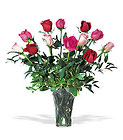 A Dozen Multi-colored Roses Cottage Florist Lakeland Fl 33813 Premium Flowers lakeland