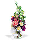 New Baby Bear Cottage Florist Lakeland Fl 33813 Premium Flowers lakeland