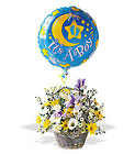 It's a Boy! Basket Cottage Florist Lakeland Fl 33813 Premium Flowers lakeland