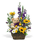 New Baby Basket & Bear Cottage Florist Lakeland Fl 33813 Premium Flowers lakeland