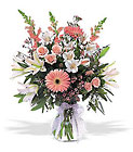 New Baby Girl Arrangement Cottage Florist Lakeland Fl 33813 Premium Flowers lakeland