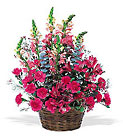 Pink Power Cottage Florist Lakeland Fl 33813 Premium Flowers lakeland
